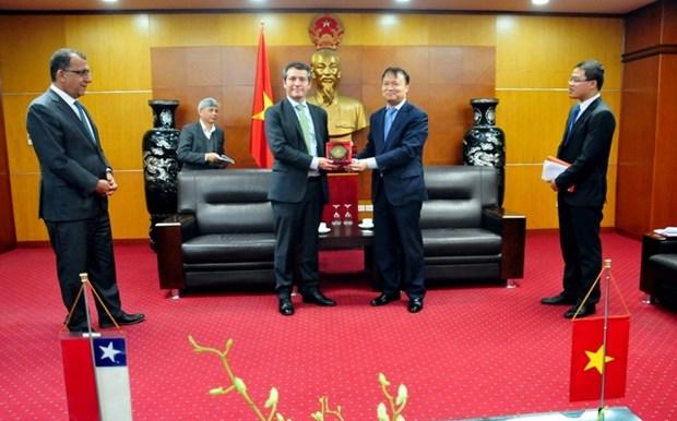 Le Vietnam et le Chili cherchent a promouvoir leur cooperation economique et commerciale hinh anh 1
