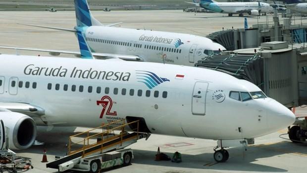 Aviation : Garuda adopte la technologie du nuage pour faire des economies hinh anh 1