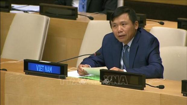 Le Vietnam appelle la communaute internationale a assister les Palestiniens hinh anh 1