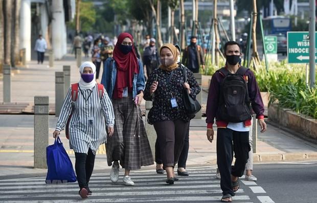 Banque mondiale : Le PIB indonesien devrait baisser plus que prevu hinh anh 1