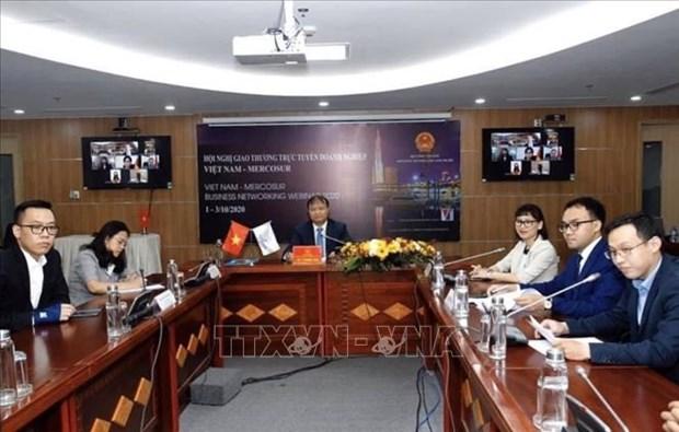 Conference commerciale en ligne Vietnam-MERCOSUR hinh anh 1