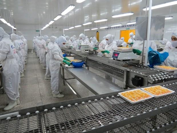 Delta du Mekong: hausse du nombre d'entreprises creees en 9 mois hinh anh 1