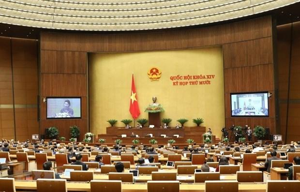 L'Assemblee nationale discute mercredi de deux projets de loi hinh anh 1