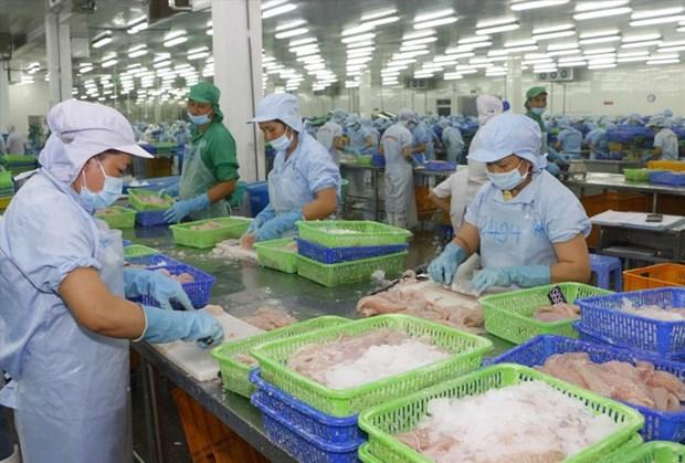 Le poisson tra vietnamien domine toujours sur le marche chinois hinh anh 1