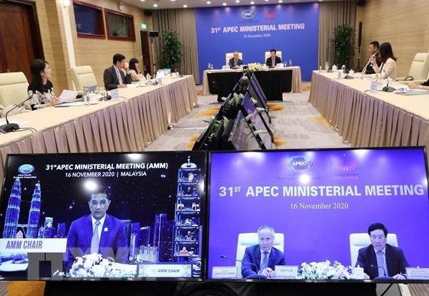 APEC : appel a une communaute economique Asie-Pacifique revitalisee hinh anh 1