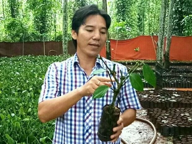 Bau May, la marque vietnamienne de poivre la plus chere hinh anh 1