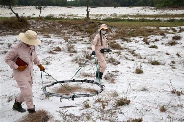 Quang Tri: deminage de pres de 97 millions de metres carres de terrain hinh anh 1