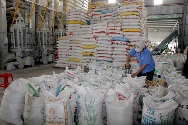 Exportation de riz du delta du Mekong en 2020 hinh anh 2
