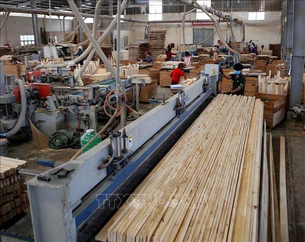 De belles perspectives pour la filiere bois du Vietnam hinh anh 2