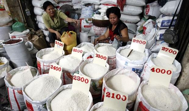 Les exportations cambodgiennes de riz vers la Chine en hausse de 46% en 2019 hinh anh 1