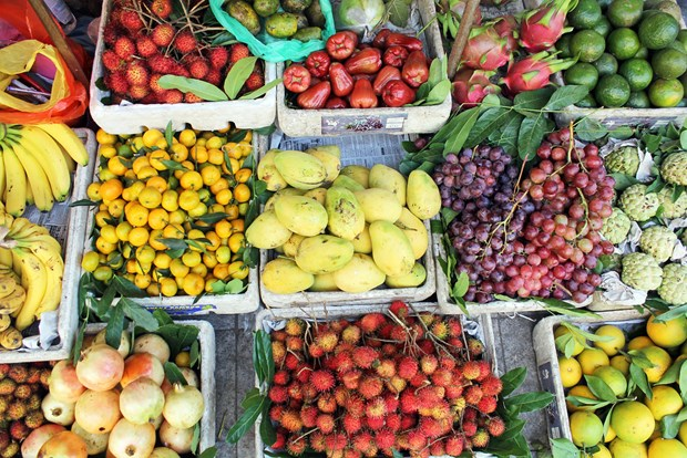 Le secteur des fruits et legumes vise 5 milliards de dollars d'exportations pour 2020 hinh anh 1