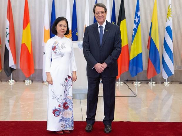 Le Vietnam attache toujours de l'importance a ses relations multiformes avec la Republique de Chypre hinh anh 1