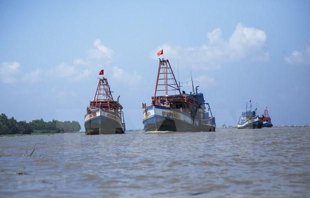 Le Vietnam et le Japon co-president un atelier sur la connaissance du domaine maritime hinh anh 1