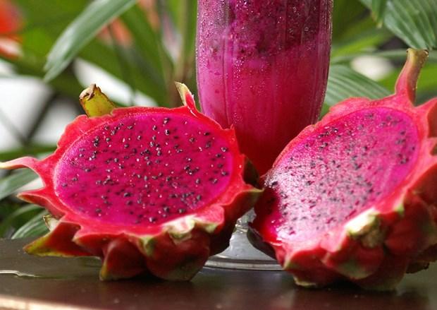 Semaine de promotion du fruit du dragon a chair rouge vietnamien en Australie hinh anh 1