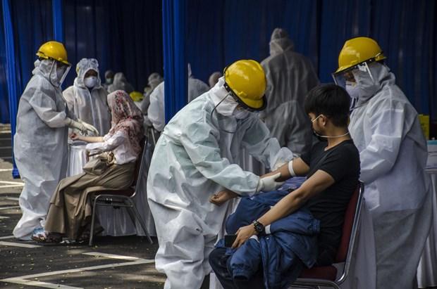 COVID-19 : La situation epidemique en Indonesie et au Cambodge hinh anh 1