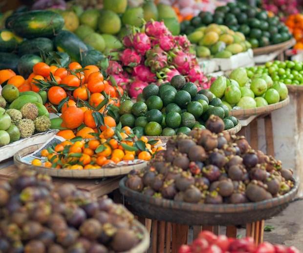 Fruits et legumes : les exportations atteignent 836 millions de dollars en trois mois hinh anh 1