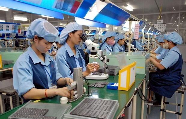 Tra Vinh : Augmentation du nombre d'entreprises nouvellement enregistrees hinh anh 1