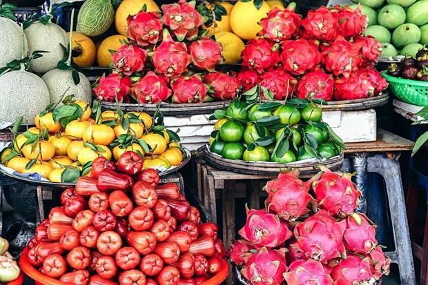 Les exportations de fruits et legumes estimees a 390 millions de dollars en avril hinh anh 1