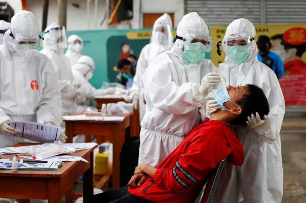 La pandemie de COVID-19 constitue toujours un defi pour certains pays d'Asie du Sud-Est hinh anh 1