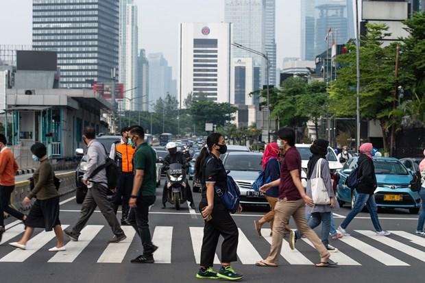 COVID-19 : L'Indonesie prolonge les restrictions sociales dans trois grandes villes hinh anh 1