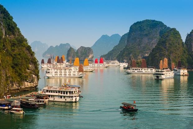 Quang Ninh, Phu Yen et Gia Lai s'efforcent de promouvoir le tourisme hinh anh 1