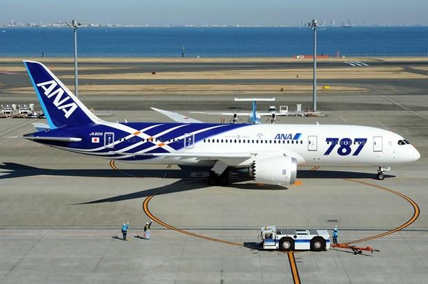 La plus grande compagnie aerienne japonaise invitee a reprendre ses vols vers le Cambodge hinh anh 1