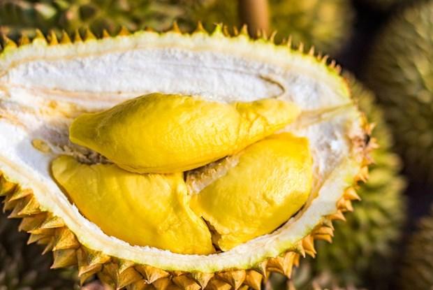 Promouvoir le durian vietnamien sur le marche australien hinh anh 1