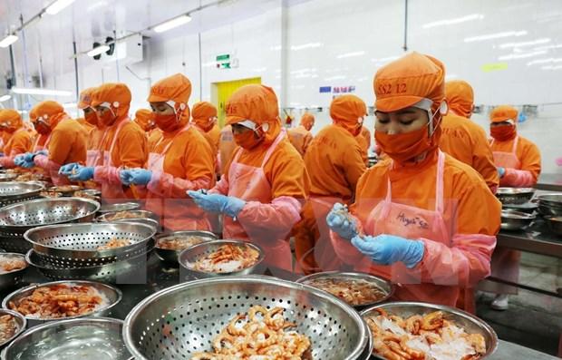 Renforcement de la cooperation entre les entreprises vietnamiennes et singapouriennes hinh anh 1