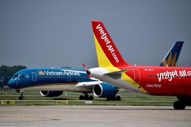 Les compagnies aeriennes proposent des promotions pour stimuler le marche interieur hinh anh 1