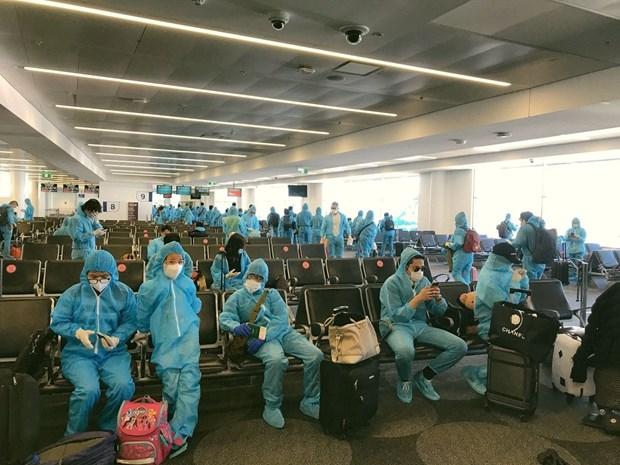 COVID-19 : environ 520 citoyens vietnamiens bloques a l'etranger rapatries hinh anh 1