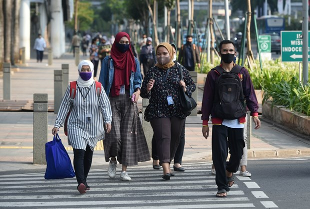COVID-19 : l'Indonesie et la Malaisie enregistrent de nouveaux cas hinh anh 1
