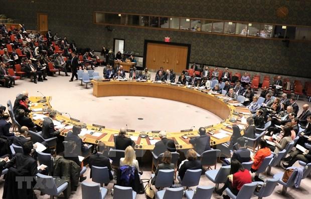 Le Vietnam affirme sa position grace aux activites au Conseil de securite des Nations unies hinh anh 1