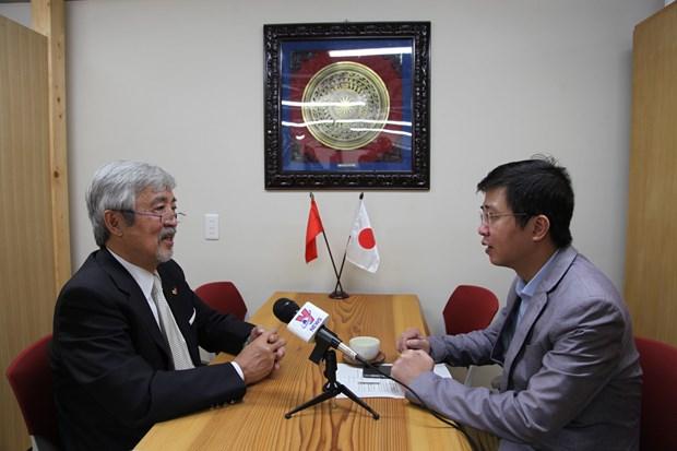Expert japonais: le Vietnam est l'un des partenaires les plus importants en Asie du Japon hinh anh 1