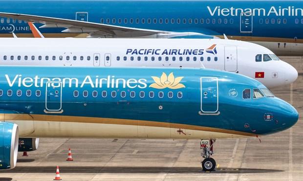 Vietnam Airlines Group ajuste le plan d'exploitation en raison du typhon Goni hinh anh 1