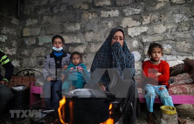 Felicitations a l'occasion de la Journee internationale de solidarite avec le peuple palestinien hinh anh 1