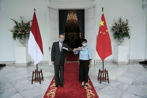 Renforcement de la cooperation Indonesie-Chine en reponse a la pandemie de COVID-19 hinh anh 1
