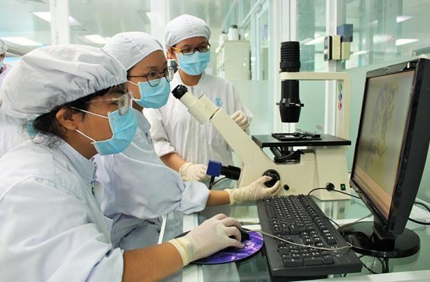 Pollution des sols: Trois scientifiques vietnamiens recoivent des subventions du programme PEER hinh anh 1