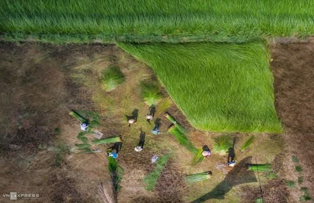 La beaute impressionnante des villages de metiers traditionnels du Vietnam hinh anh 9