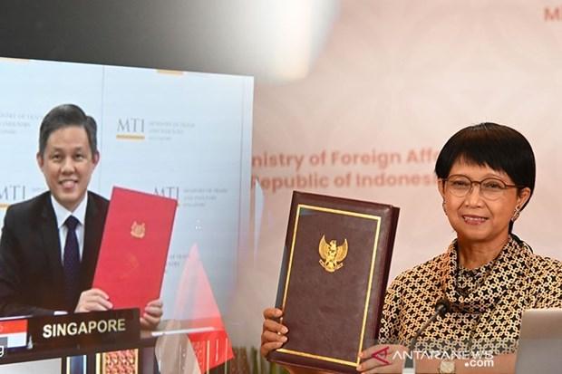 Le traite d'investissement bilateral Indonesie-Singapour entre en vigueur hinh anh 1