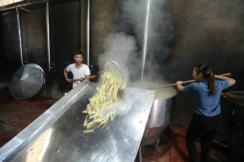 Les pousses de bambou contribuent au refus de la pauvrete hinh anh 3