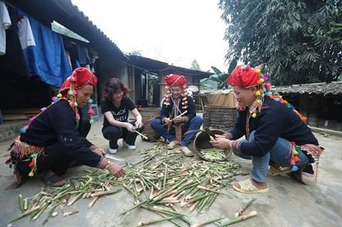 Les pousses de bambou contribuent au refus de la pauvrete hinh anh 2