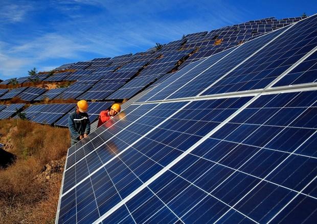 Energies renouvelables: le delta du Mekong attractif pour les investissements etrangers hinh anh 2