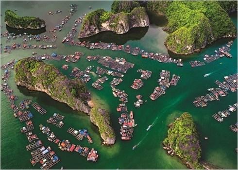 Les plages du Vietnam, chefs-d'œuvre de la nature hinh anh 2
