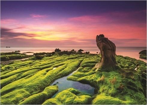 Les plages du Vietnam, chefs-d'œuvre de la nature hinh anh 3