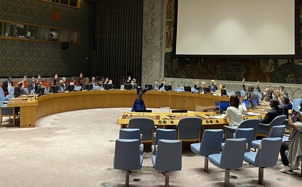Le Vietnam affirme son soutien a la lutte contre la proliferation des armes de destruction massive hinh anh 1