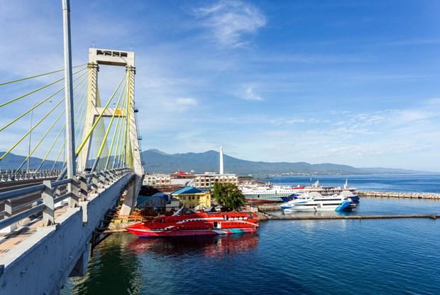 L'Indonesie et la France renforcent leur cooperation dans le secteur maritime hinh anh 1