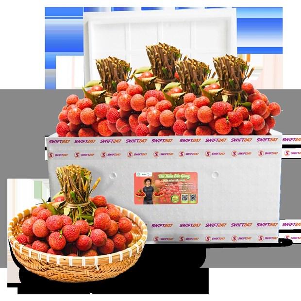 Vietjet s'associe pour promouvoir les exportations et la consommation de litchis hinh anh 2