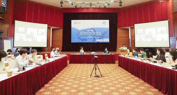 Promouvoir l'egalite des sexes dans le systeme d'assurance sociale et de securite sociale au Vietnam hinh anh 1