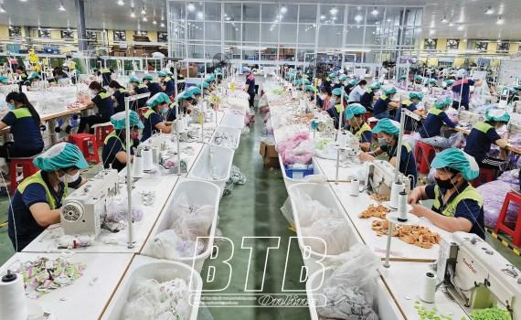 Thai Binh cible la croissance de 9.1% en 2021 hinh anh 1