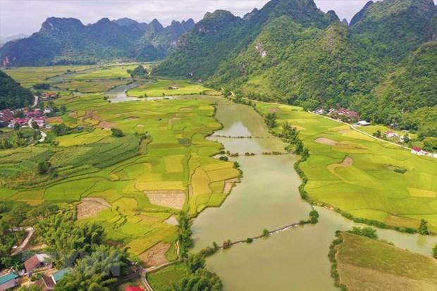 Les Journees du Vietnam en Suisse 2021 auront lieu en ligne en octobre hinh anh 3